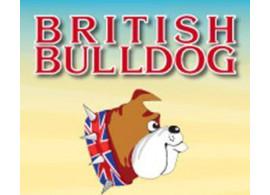 Поздравляем победителей олимпиады по английскому языку British Bulldog-2017