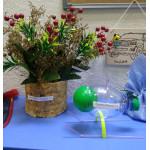 Неделя естественных наук состоялась!
