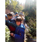 Экологические проекты в Ботаническом саду
